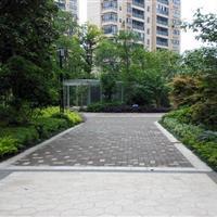 华菱嘉园总部办公楼室外景观绿化工程