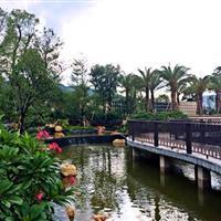梅县-富力城园林绿化工程案例