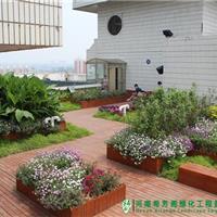洛阳正骨医院屋顶花园项目