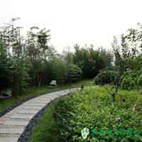 河南省地质调查研究院屋顶花园项目