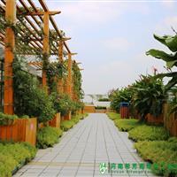 郑州市教育局屋顶绿化项目