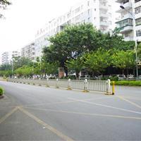 龙华街道绿化养护服务项目