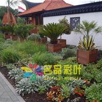 庭院绿化案例