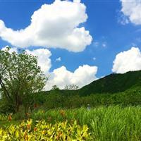 苏州白马涧环山路景观设计
