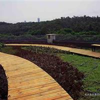 屋顶绿化工程