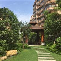 紫荆花园园林景观工程