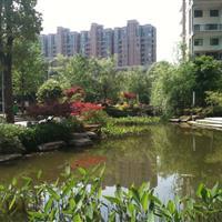 金水湾园林景观工程