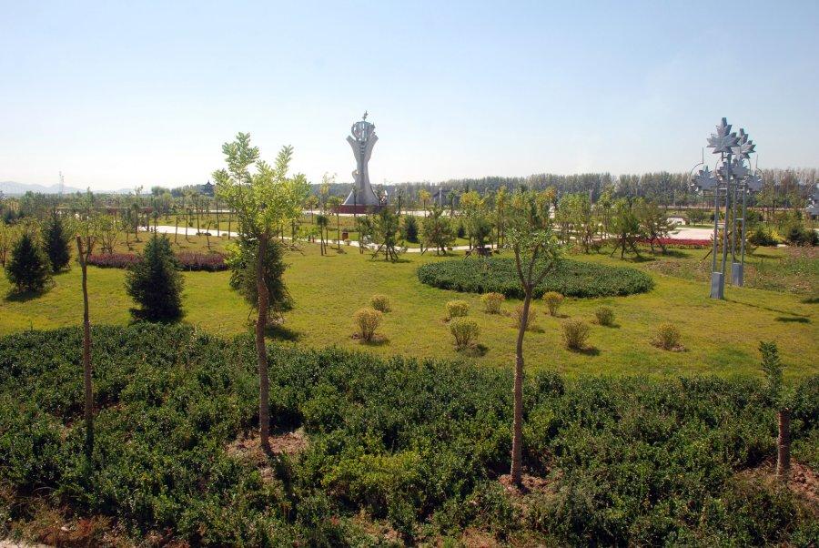 壁纸 成片种植 风景 植物 种植基地 桌面 900_602