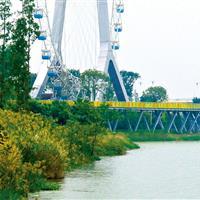 重庆寨山坪森林公园