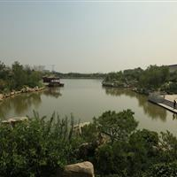 滨海一号景观绿化工程