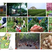 谷盛农庄景观规划设计