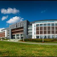 合肥工业大学宣城校区绿化工程