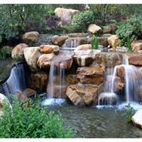 马山自然保护区绿化工程