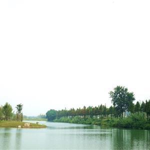 安徽省大地园林工程有限公司