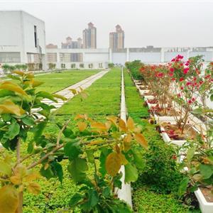 深圳市弘景园林有限公司