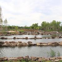 扎兰屯河西新区生态景观工程